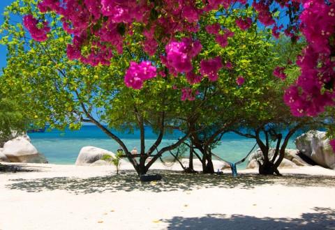 หาดศาลเจ้า เกาะเต่า