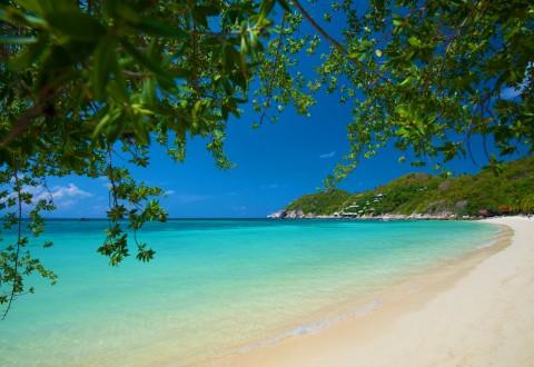 อ่าวเทียนออก (ชาร์คเบย์) ชายหาดของเกาะเต่า