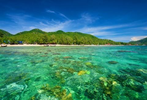 อ่าวและชายหาดของเกาะเต่า — หาดทรายรี