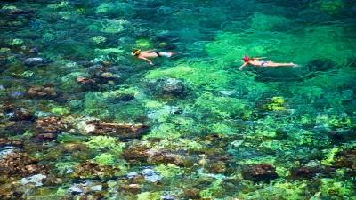 Snorkelling Koh Tao