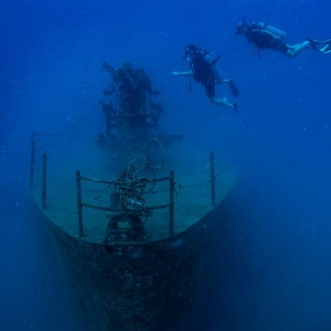 ซากเรือจมสัตกูต จุดดำน้ำเกาะเต่า