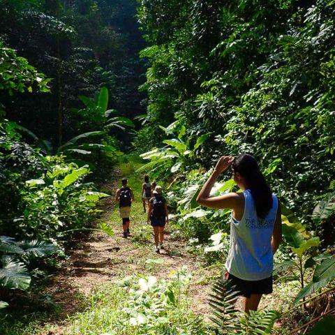 Hiking Mango Bay, Koh Tao