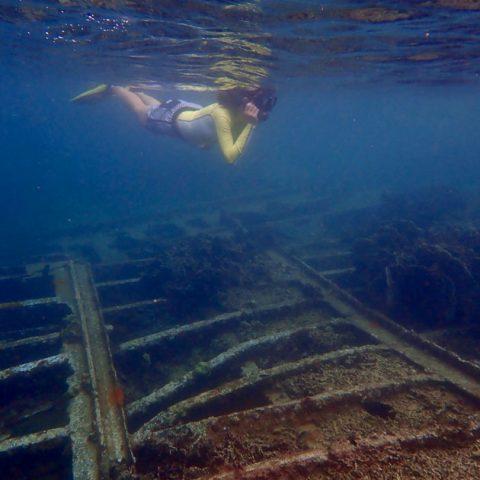 Mae Haad shipwreck, Koh Tao