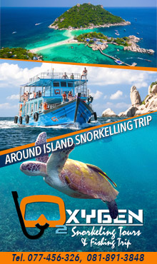 Oxygen Snorkelling Tour Koh Tao