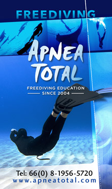 Apnea Total Freediving Koh Tao