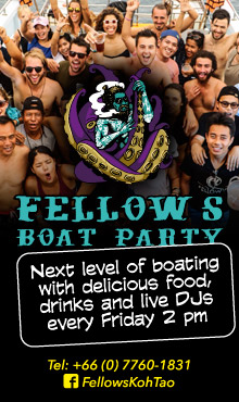 Fellow's Boat Party