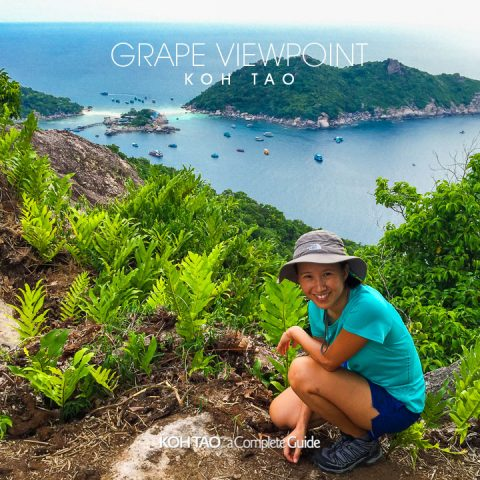 Grape Viewpoint, Koh Tao