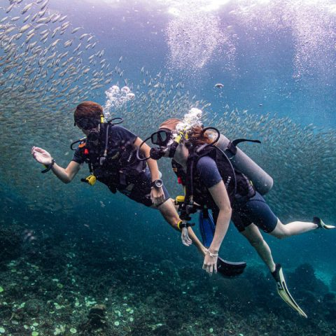 Bans Diving Resort, Koh Tao - Discover Scuba Diving Course