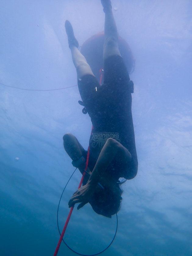 การเรียนฟรีไดฟ์ Free Immersion ในทะเลเกาะเต่า