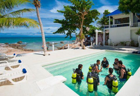 โรงเรียนสอนดำน้ำบนเกาะเต่า - ซิมเปิ้ลไลฟ์ไดฟ์เวอร์ เกาะเต่า