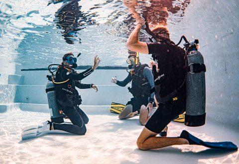 โรงเรียนสอนดำน้ำบนเกาะเต่า - อัศวไดฟ์รีสอร์ท