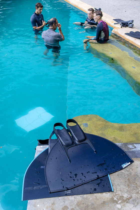 Freediving Course - New Heaven Dive School, Koh Tao