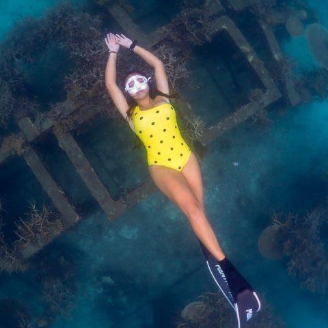 ฟรีไดฟ์อ่าวหินงาม เกาะเต่า